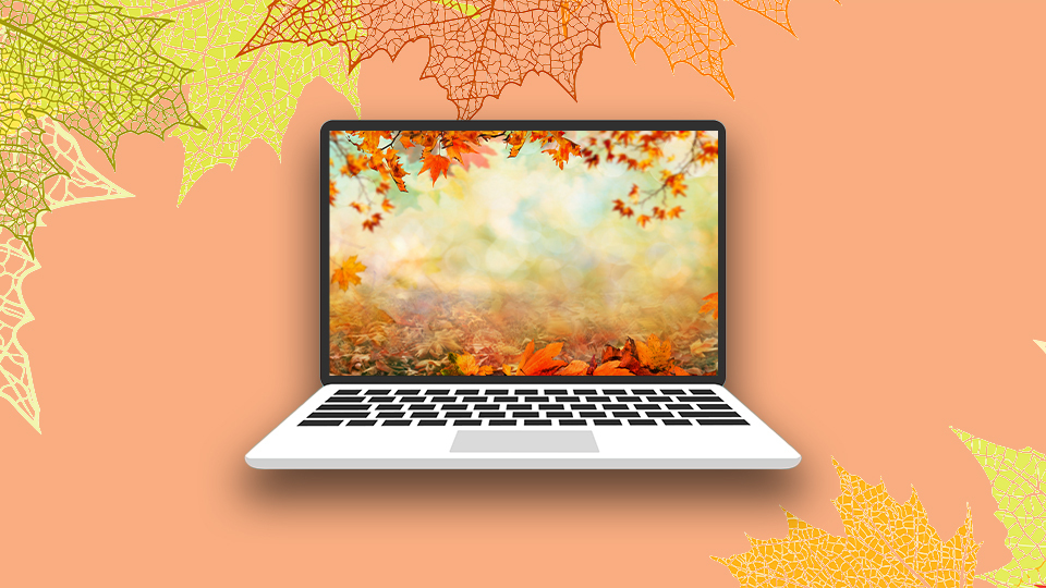 These Fall Zoom Backgrounds Are So Festive For Autumn Stylecaster