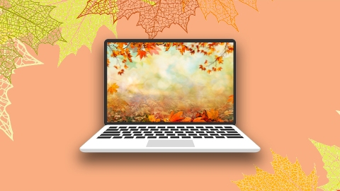 These Autumnal Zoom Backgrounds Are So Festive For Fall   StyleCaster