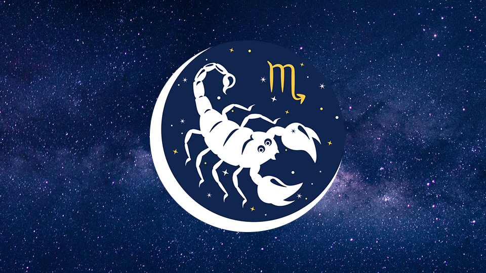 Scorpio, Your January 2021 Horoscope Focuses On Relationships & Communication   StyleCaster