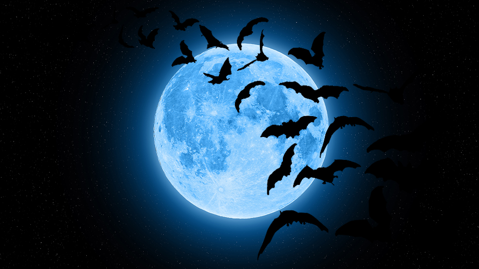 A Rare Blue Moon Is Happening On Halloween—Here's What That Means