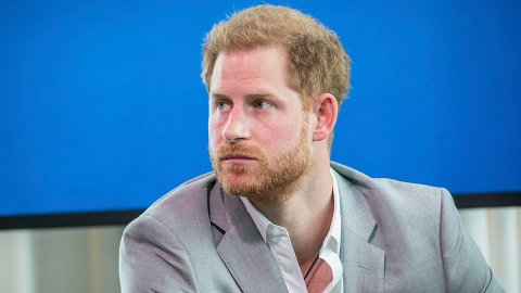 Prince Harry Is Being Slammed For His Netflix Deal Amid The Crown's Controversial Season | StyleCaster