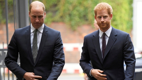 Prince William Accused Harry of Putting 'Fame Over Family' After His Oprah Interview | StyleCaster