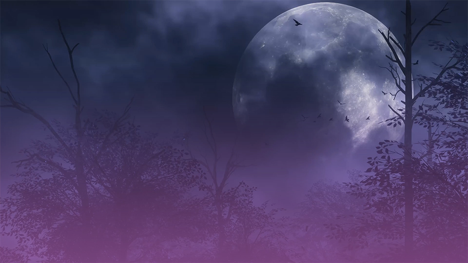 Bookmark This List Of Every Full Moon Happening In 2021
