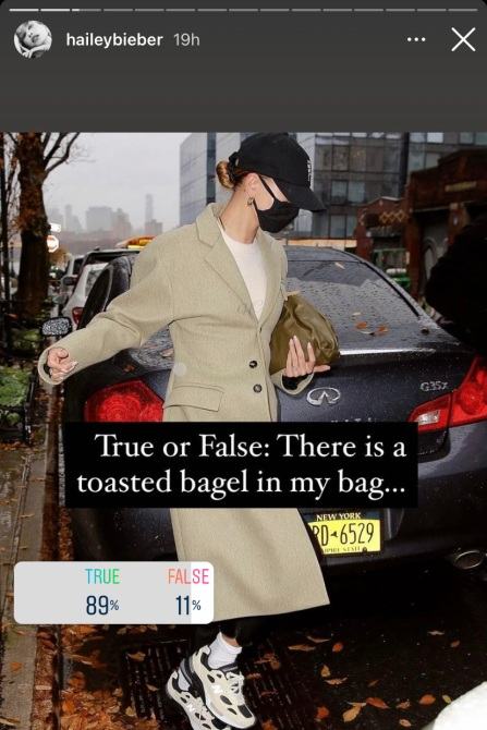 STYLECASTER   Hailey Bieber Bottega Bag