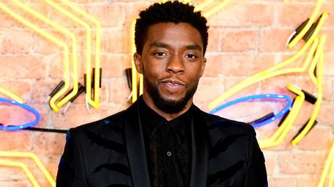 Chadwick Boseman's Net Worth Includes His Massive Mavel Salaries | StyleCaster