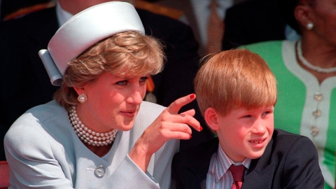 Prince Harry 'Didn't Want to Believe or Accept' Princess Diana's Death When He Was Young | StyleCaster