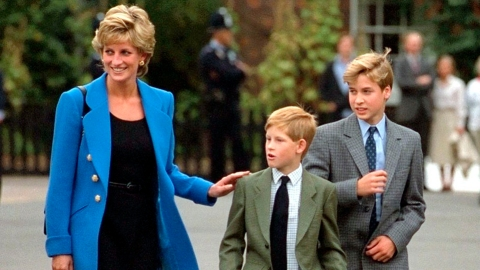 Harry's Comparisons Between Harry & Meghan Show How Much He Misses His Mom | StyleCaster