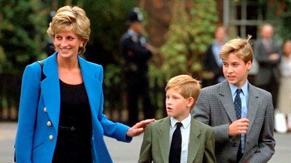 Princess Diana, Prince Harry, Prince William