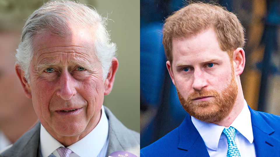 Prince Charles 'May Never Forgive' Harry For His Tell-All—Here's Where the Queen Stands