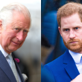 Here's How Prince Charles Reacted to Prince Harry...