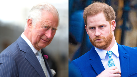 Here's How Charles Reacted to Harry's Memoir After He Blamed Him for 'Pain' & 'Suffering' | StyleCaster
