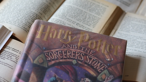 Here's How to Read the 'Harry Potter' Books For Free to Relive the Magic of the Series | StyleCaster