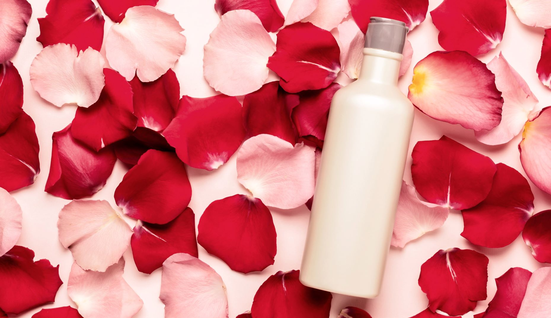 There's Still Time To Celebrate National Rose Month With These Rose-Inspired Products