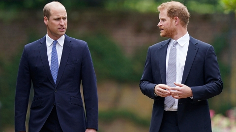 Here's How William Reacted to Harry's Book News After He Talked 'Bad' About Him   StyleCaster
