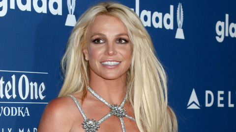 Britney Just Chose a New Lawyer After Reports Her Old Attorney Was 'Loyal' to Her Dad | StyleCaster