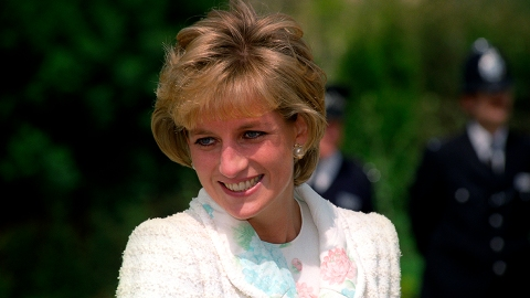 Princess Diana's Net Worth Reveals How Much She Left William & Harry After Her Death | StyleCaster