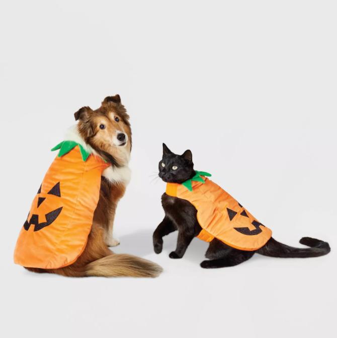 STYLECASTER   Pet Halloween Costumes