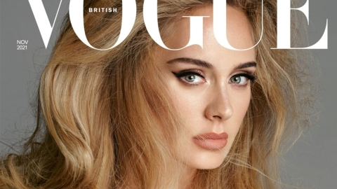No One Has Ever Looked Hotter Than Adele On Her 'British Vogue' Cover   StyleCaster