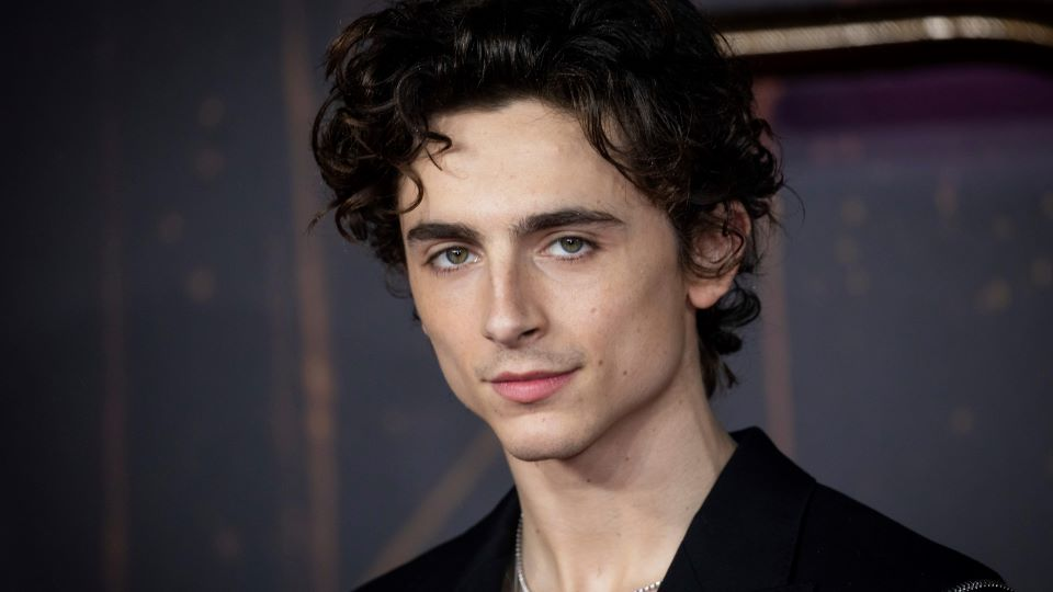 Timothée Chalamet's Net Worth Nearly Doubled After Filming 'Dune'—Here's His Salary | StyleCaster